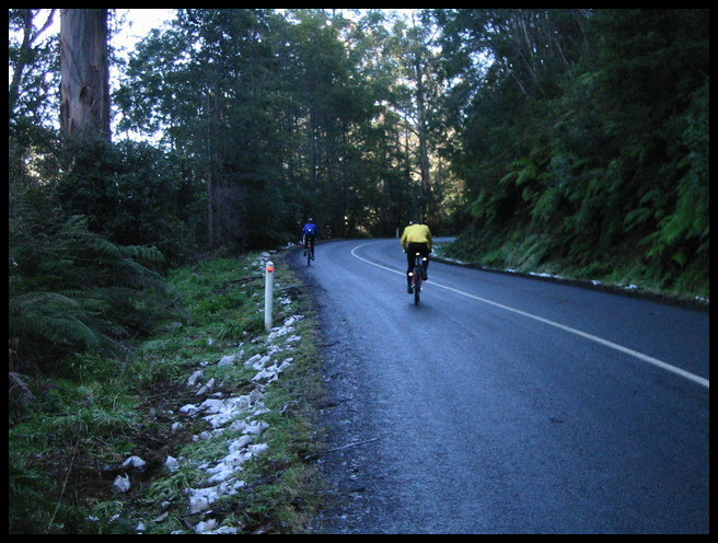 Mt Donna Buang in the snow